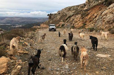 Séminaire en Crète