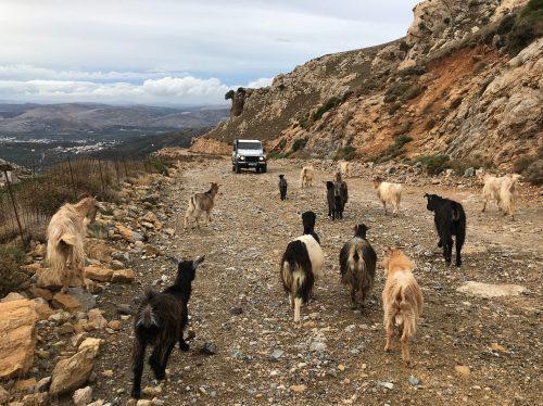 Séminaire Crète-Septembre 2019