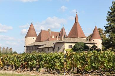 Beaujolais Domaine château