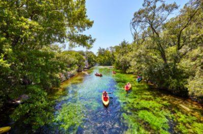 Descente de la Sorgue en kayak