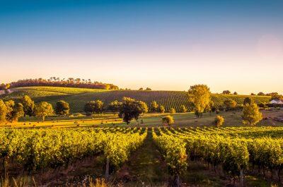 Séjour incentive Sud-Ouest de la France